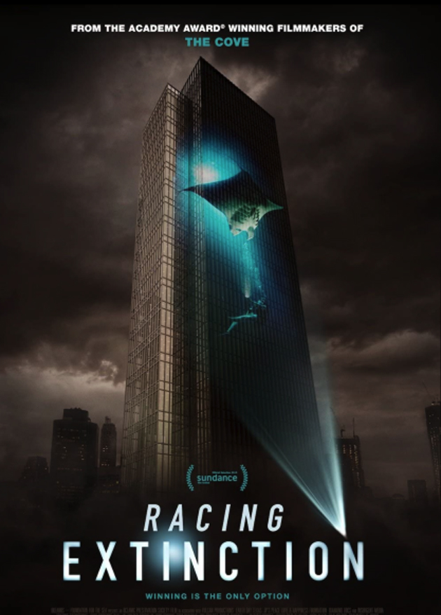 racing copy